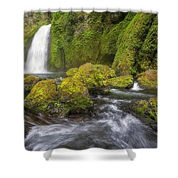 Wahclella Falls Shower Curtain by David Gn