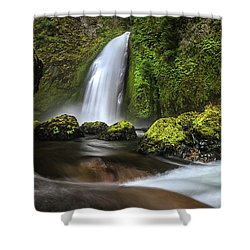 Wahclella  Shower Curtain