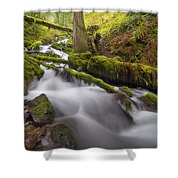 Wahkeena Creek In Green Shower Curtain by David Gn