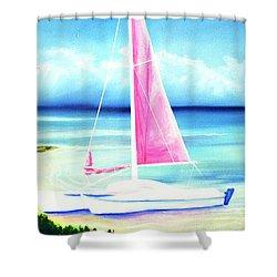 Waimanalo Beach #187 Shower Curtain by Donald k Hall