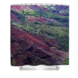 Shower Curtain featuring the photograph Waimea Canyon II by Kenneth Campbell