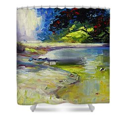 Waipu Cove Shower Curtain
