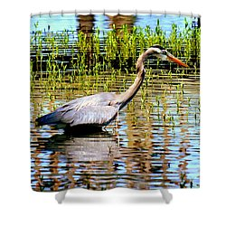 Waiting For Dinner Shower Curtain