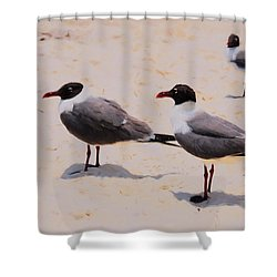 Shower Curtain featuring the photograph Waiting For Handouts by Jan Amiss Photography