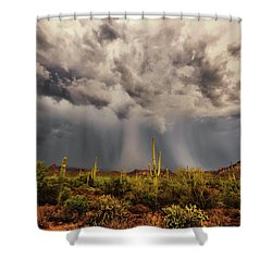 Waiting For Rain Shower Curtain by Rick Furmanek