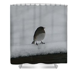 Shower Curtain featuring the digital art Waiting For Spring by Barbara S Nickerson