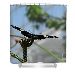 Waiting For Take Off Shower Curtain by Michael Krek