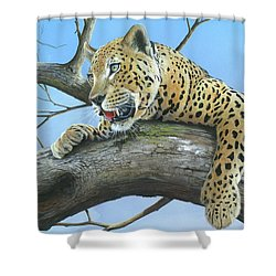 Shower Curtain featuring the painting Waiting Game by Mike Brown