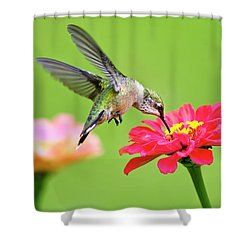 Shower Curtain featuring the photograph Waiting In The Wings by Christina Rollo