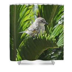 Waiting Or Thinking Shower Curtain
