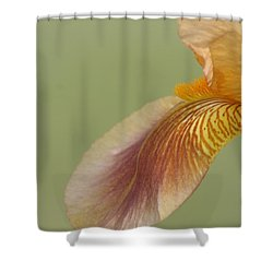 Waiting Softly Shower Curtain