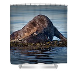 Shower Curtain featuring the photograph Wake Up by Randy Hall