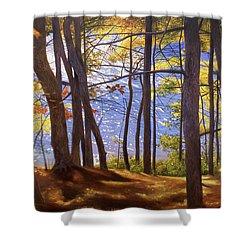 Walden Pond IIi Shower Curtain by Art Chartow