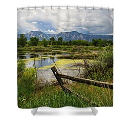 Waldon Ponds Shower Curtain by Juli Ellen
