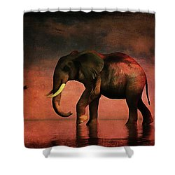 Walk Alone Shower Curtain