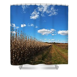 Shower Curtain featuring the photograph Walk By The Corn Field by Elsa Marie Santoro
