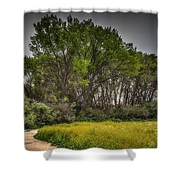 Walk In The Meadow In Spring Shower Curtain