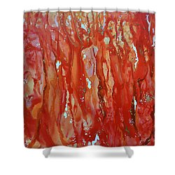 Walk In The Wood Shower Curtain