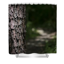 Shower Curtain featuring the photograph Walk In The Woods by Andrea Silies