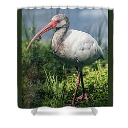 Walk On The Wild Side  Shower Curtain by Saija Lehtonen