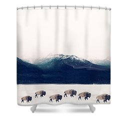 Shower Curtain featuring the painting Walk The Line by Bri B