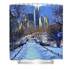 Walk Thru Central Park Shower Curtain