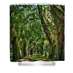 Shower Curtain featuring the photograph Walk With Me Avenue Of Oaks St Simons Island Art by Reid Callaway