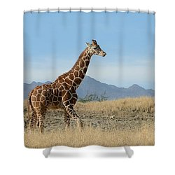 Walkabout 3 Shower Curtain