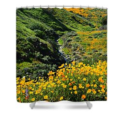 Shower Curtain featuring the photograph Walker Canyon Vista by Glenn McCarthy Art and Photography