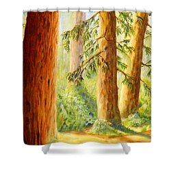 Walker Park In Summer Shower Curtain