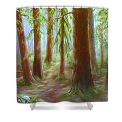 Walker Park Woods Shower Curtain
