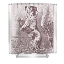 Walkies? Shower Curtain