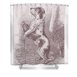 Walkies? Shower Curtain