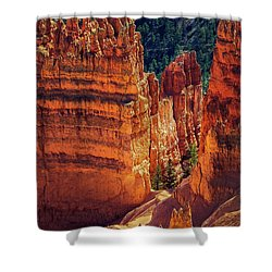 Walking Among Giants Shower Curtain