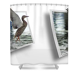 Walking On Water - Gently Cross Your Eyes And Focus On The Middle Image Shower Curtain by Brian Wallace