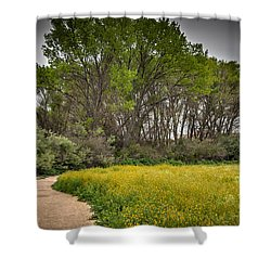 Walking Path In Tall Oak Trees In Spring Shower Curtain