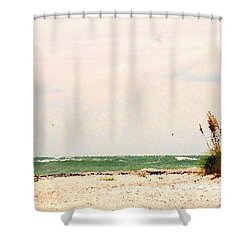 Walking The Beach Shower Curtain by Ian  MacDonald