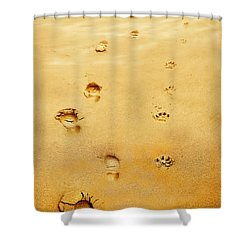 Walking The Dog Shower Curtain by Mal Bray