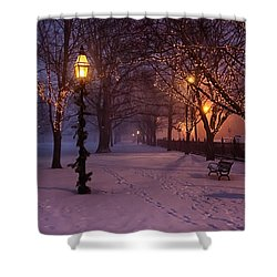 Walking The Path On Salem Common Shower Curtain