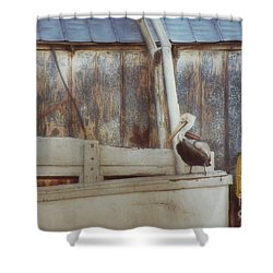 Shower Curtain featuring the photograph Walking The Plank by Benanne Stiens