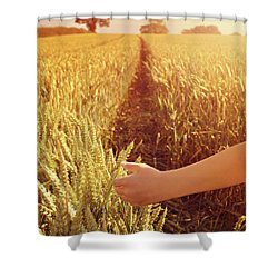 Shower Curtain featuring the photograph Walking Through Wheat Field by Lyn Randle