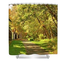 Walking Under Poplars Shower Curtain by Jim Sauchyn