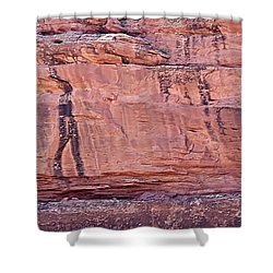 Walking Warrior Shower Curtain by Anne Rodkin