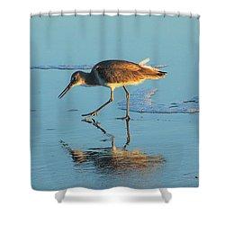 Walking Willet Shower Curtain by Rosanne Jordan