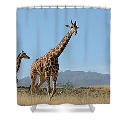 Walking With Mom Shower Curtain