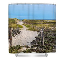 Walkway To The Beach Shower Curtain by Michelle Wiarda