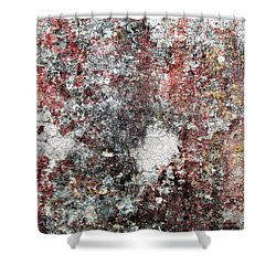 Wall Abstract 103 Shower Curtain