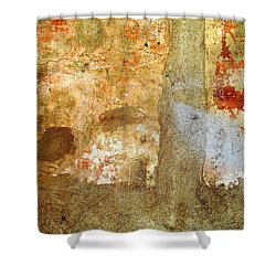 Wall Abstract 156 Shower Curtain