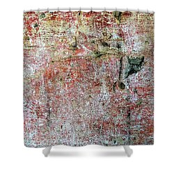 Wall Abstract 169 Shower Curtain