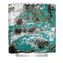 Shower Curtain featuring the photograph Wall Abstract 171 by Maria Huntley